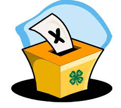 Cover photo for 4-H County Council Officer Nomination Application