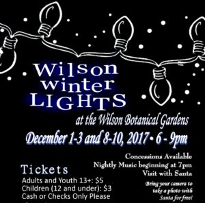 Cover photo for 2017 Wilson Winter Lights