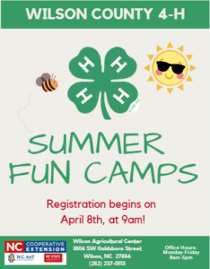 Cover photo for 4-H Summer Fun Camps 2019