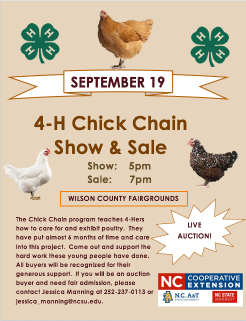 4-H Chick Chain SHow and Sale flyer image