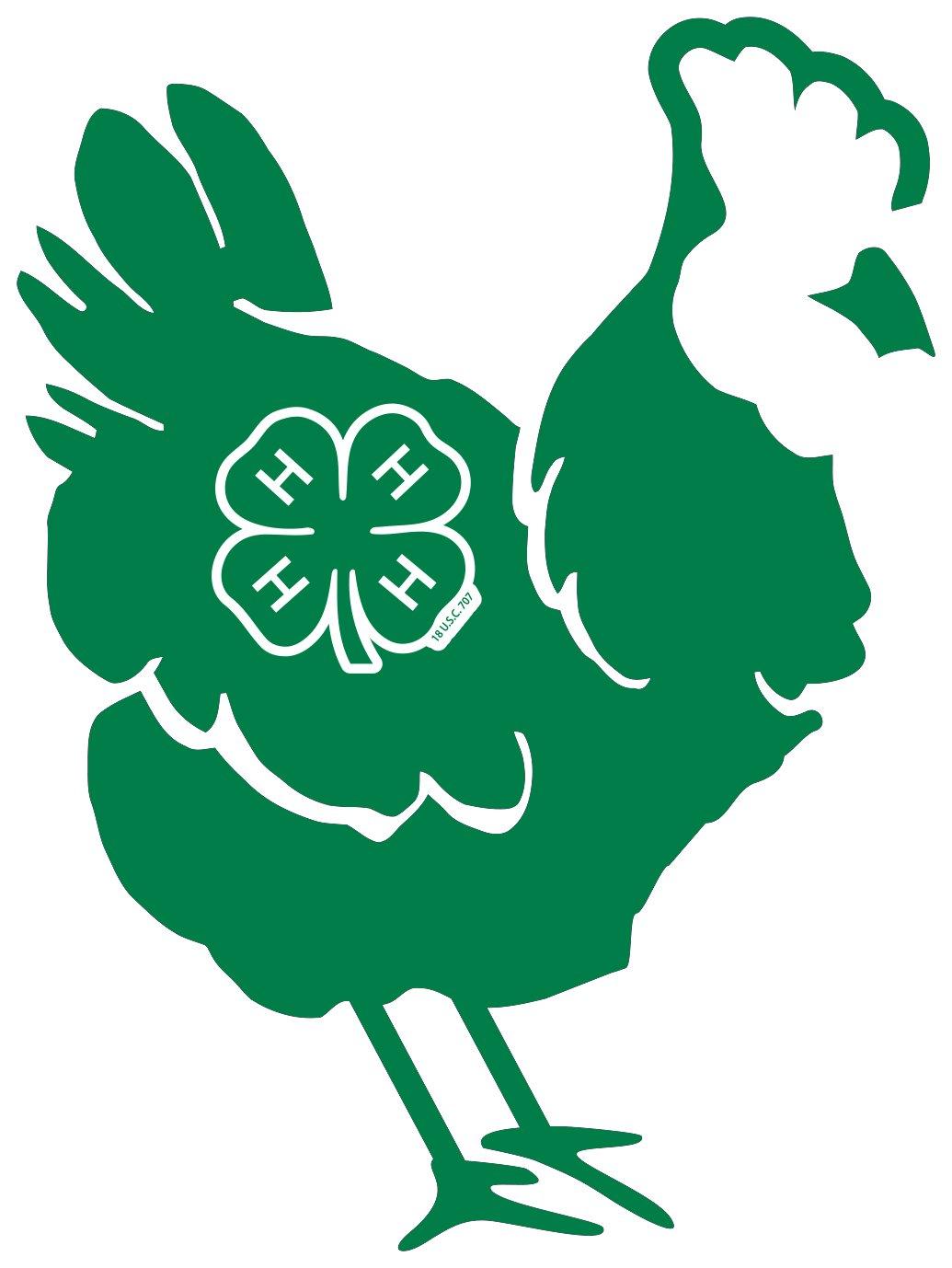 4-H chicken logo image