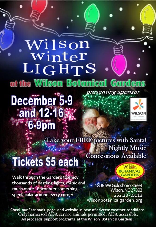 Wilson Winter Lights flyer
