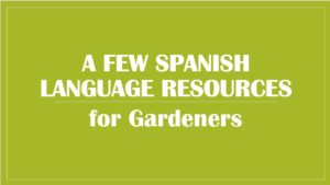 Cover photo for Spanish Language Resources
