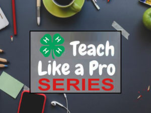 Cover photo for Join Us for Teach Like a Pro Series