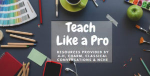 Cover photo for Teach Like a Pro