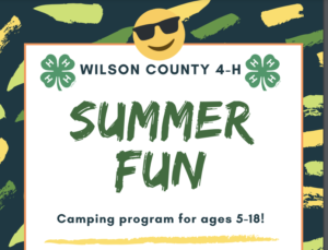 Cover photo for Wilson County 4-H Summer Fun Camps OPEN Registration